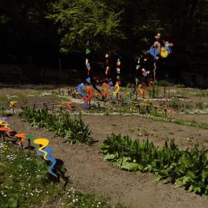 jardin-2013-10