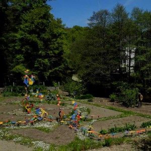 jardin-2013-11