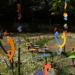 jardin-2013-6