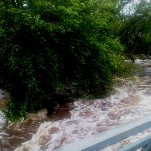 inondation-avril-2012-5